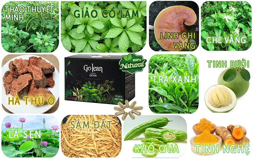 Thành phần trà giảm cân Golean