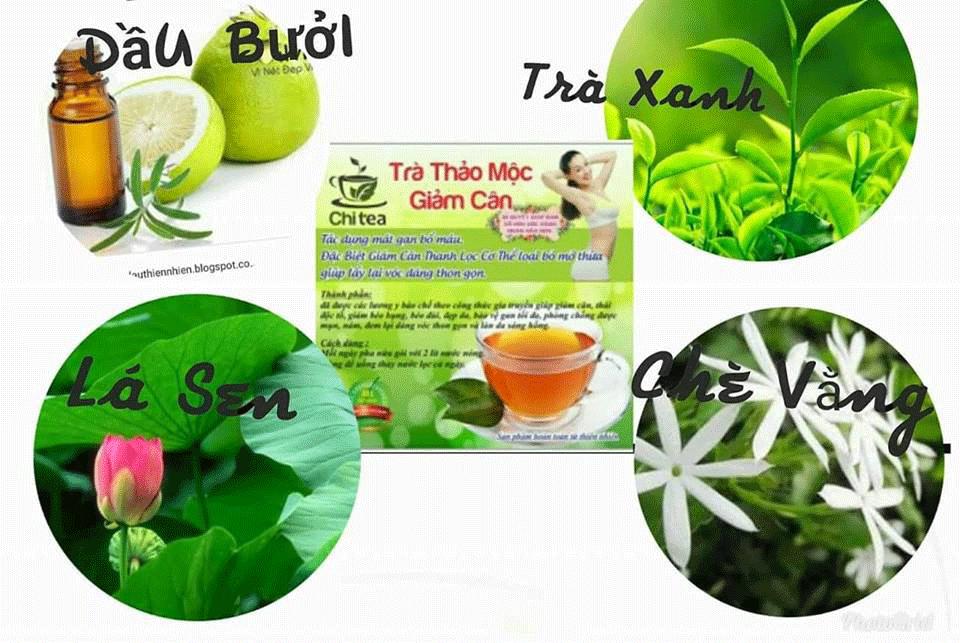 Thành Phần Trà Giảm Cân Chi Tea