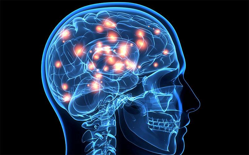 Trà lá sen giúp cải thiện hệ thần kinh