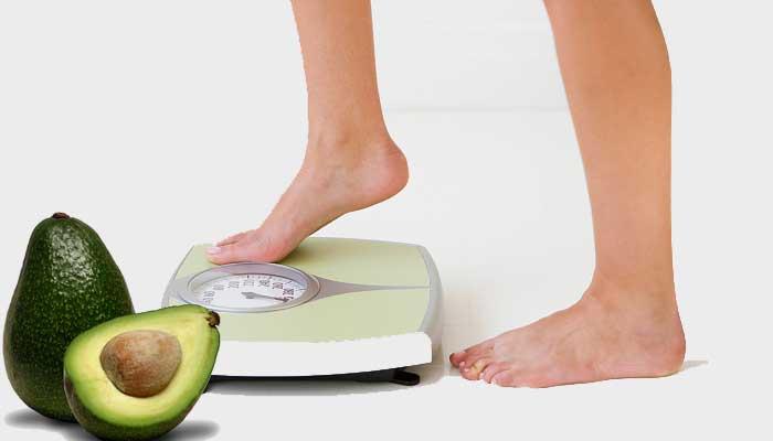 Ăn bơ vừa giúp giảm cân vừa giúp kiểm soát cân nặng
