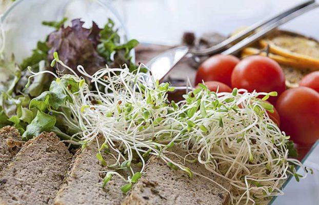 Lợi ích từ mầm đậu nành