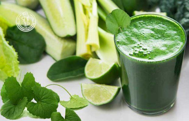 Thực đơn giảm cân với rau má