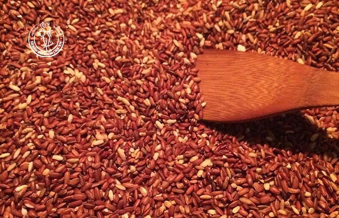Gạo lứt đỏ loại gạo phổ biến nhất
