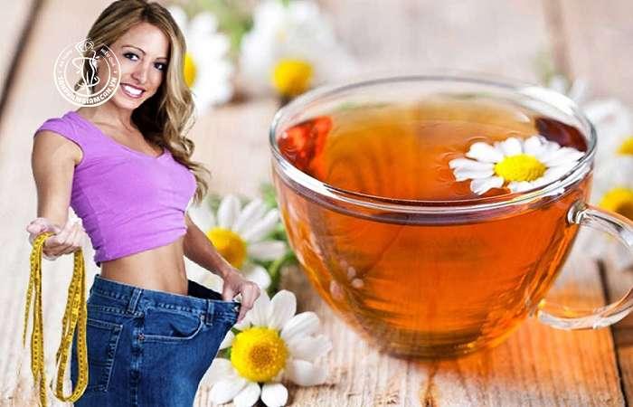 Trà hoa cúc có giảm cân không