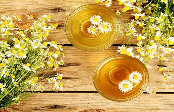 Trà hoa cúc hỗ trợ phòng nhiều loại bệnh