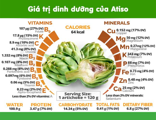 Dinh dưỡng từ Atiso