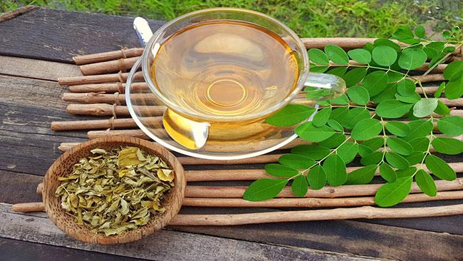 Tìm hiểu về trà chùm ngây (Moringa)