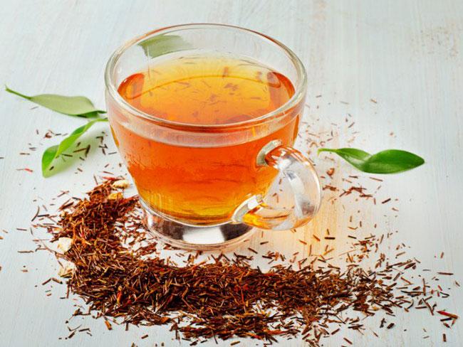 Tìm hiểu về trà Rooibos