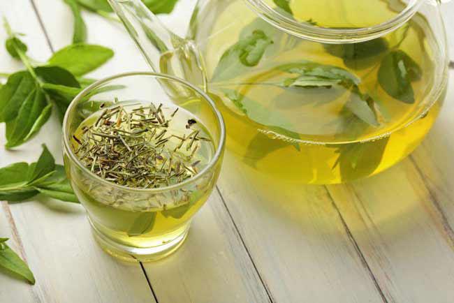 Tìm hiểu trà Sencha